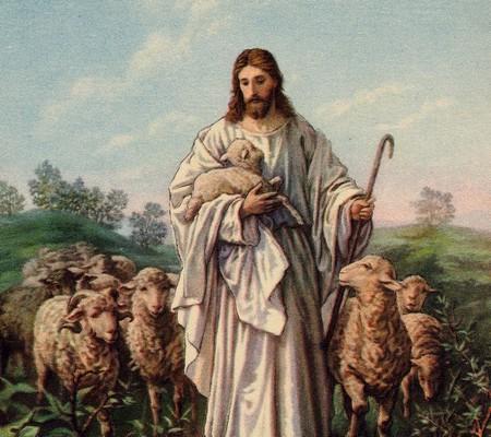 Homilia na niedzielę Dobrego Pasterza