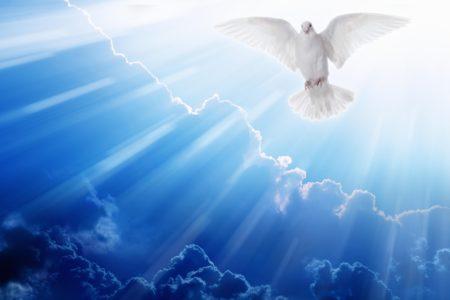 Homilia - Zesłanie Ducha Świetego - 31.05.2020