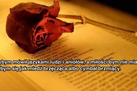 Prawdziwa miłość nigdy nie ustaje