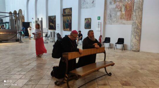 Maryjo ja Twe dziecię o podaj mi swą dłon- rozpoczyna się Europejska Peregrynacja Cudownego Obrazu Matki Bożej Wniebowziętej
