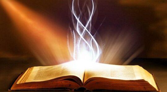 Wprowadzajcie słowo w czyn...  XXII Niedziela Zwykła - 29 sierpnia 2021